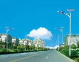 50W LED Solar Road Lights, High Efficienfy with Soncap Certificated