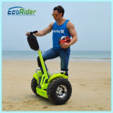 1266wh Two Wheels Stand up Electric Scooter with Ce Certification