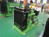 80-100kw Natural Gas Generator Set for Export to Russia