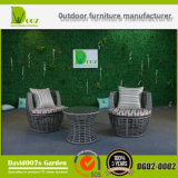 Garden Furniture PE Rattan Leisure Lounge Set
