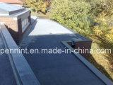 Roof Waterproofing Bitumen Membrane/Bitumen Rolls