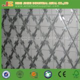 Bto-22 Hot-Dipped Galvanized Concertina Razor Barbed Welded Wire Fence