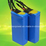 Prismatic LiFePO4 Battery Pack for Electric Car of 24V/36V/48V 25ah 50ah