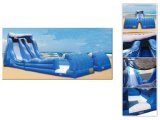 Inflatable Water Slide (CH-1006)