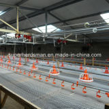 Automatic Poultry Feeding and Drinking System