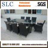 Rattan Outdoor Chair (SC-B8849-BB-T)