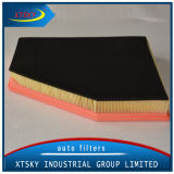Hot Sale Auto Air Filter (C31143) for BMW