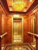 Fjzy-High Quality and Safety Villa Elevator Fjs-1508