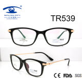 Colorful New Arrival Hot Sale Tr90 Optical Frame (TR539)