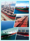 Bulk Container Consolidate Shipping Service From China to Dubai