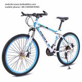 High Quality Cheap Adult Mountain Cycle