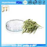 Bulk Pure Stevia Extract/Steviol Glycoside 80%- 95%