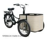250W Motor Three Wheel Electric Tricycle Customized Mini Cheap Bike for Elder