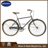 700c City Bike/Bicycle, Fixed Bike/Bicycle 1-SPD City Bicycles (CTB1)
