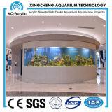 Large Acrylic Aquarium Wall