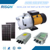 Surface Solar Pump for Garden & House Use