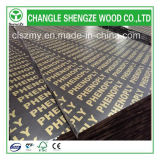 Waterproof 18mm Logo Film Faced Plywood
