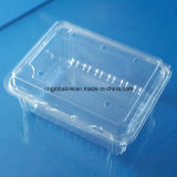 Clear Disposable Plastic Packaging Box Fruit Packaging Container 500 Gram FDA Approved