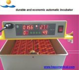 China Manufacture for Durable Egg Incubator (48eggs-20000eggs)