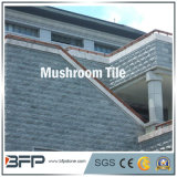 Natural Granite/ Slate Mushroom Tiles for Landscaping