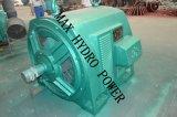 Hydro Turbine/Turbina De Agua for Hydropower
