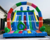 Attractive Designs Wet or Dry Inflatable Slide for Children Parks