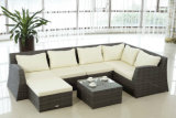 Outdoor Furniture, Garden Furniture, Rattan Furniture, Wicker Furniture Sofa (BZ-SF061)