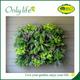Onlylife Movable Vertical Wall Widely Used Planter Hanging Planter