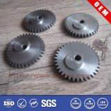 OEM Different Types of Plastic Gears/Sprokets Gears