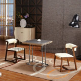 Leisure Square Wooden Dining Table and Chair Furniture (SP-CT812)