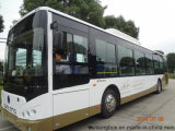 City Bus Inter-City Bus County Bus 12m 41-60 Seats Left Hand Drive (SLK6129AU)