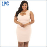 China Supplie Spring Sexy Plus Size Dress for Woman