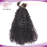 Top Human Hair Virgin Brazilian Curly Hair