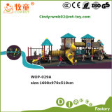 Functional Summary Sunshine Series Children Outdoor Playground Slides