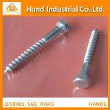 Stainless Steel 304/316 M8 DIN571 Coach Screw Wood Screw
