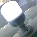 China Supplier LED Lighting Bulb with 10000 Hours Life