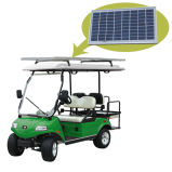 Golf Cart/Buggy with Solar Panel 2+2-Seater Green