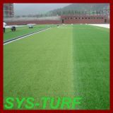 Standard Football Grass for Professional Fields