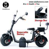 2018 Easy Removable Battery Harley Citycoco Scooter 1000W 1500W with Storage Box