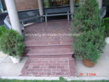 China Red Porphyry Tiles for Paving, Flooring (YY -GT011)