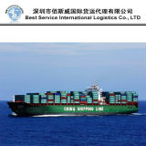 International Forwarder Shipping From Ningbo to Houston by Ocean