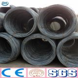 Hot Rolled SAE1008 5.5mm Steel Wire Rod in China