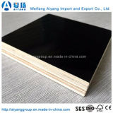 Good Quality Film Faced Plywood/Shuttering Formwork Plywood/Marine Plywood
