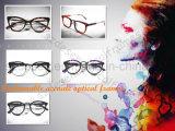 Custom Wholesale Full Rim Acetate Eyewear Optical Frame