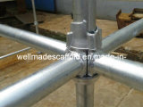 Scaffolding Ladder/Coupler/Clamp/Screw Jack/Steel Prop/Cuplock/Scaffold