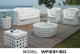 Modern Outdoor Furniture/ Rattan / Wicker Sofa Set (WF231-03)