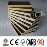 Low Price Imprinted Brown Film Faced Poplar Plywood