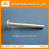 China Factory New Design Fasteners Carriage Screw
