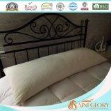 Amazon Hot Hotel Polyester Memory Foam Pillow
