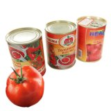 400g Canned Tomato Paste Made in China